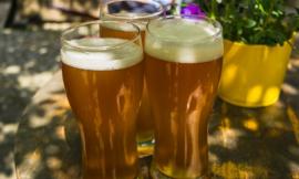 Die wichtigsten Bierglas Arten